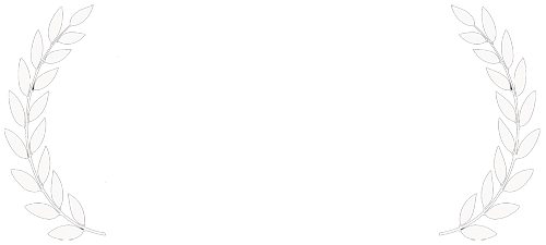 Braunschweig International Film Festival 2015 Official Selection