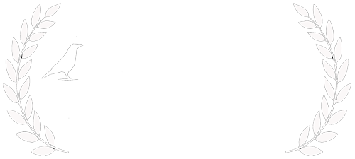 IndieLisboa Film Festival Official Selection
